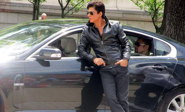 SRK in Dilwale blue jeans