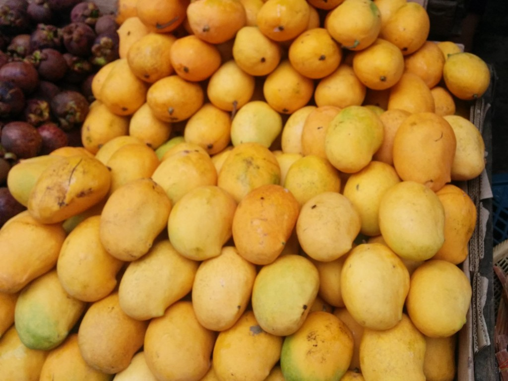 Sein Ta lone mangoes
